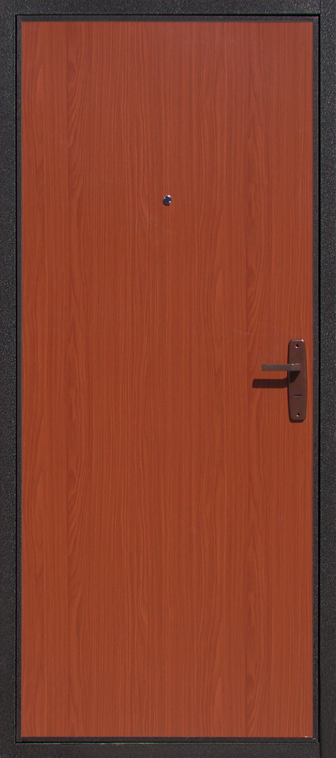 дверь металлическая строительная